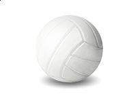 Volleyball Menu